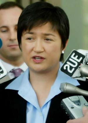 Caught up in expectations: A comment on substantive representation and Penny Wong