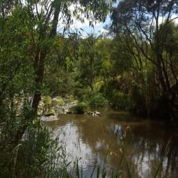 Yarra River at Lower Plenty, VIC